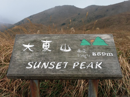 Sunset Peak - Golden Silver Grass