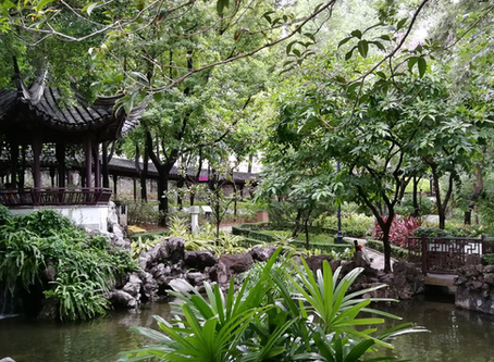 Little oasis in concrete jungle - Kowloon Walled City Park