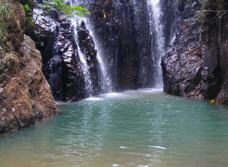 Sheung Tam Stream & Tai Tam Mound Waterfall