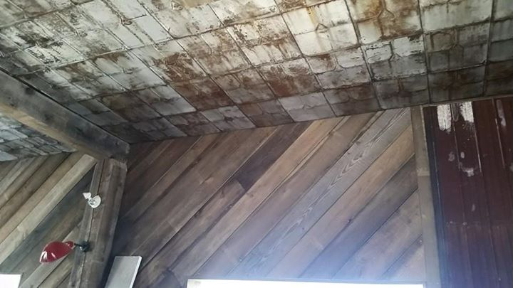 Tin Ceiling and Wood Slat Walls