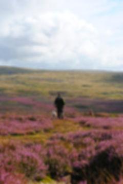 RuralLifestyle_runnerup_Sophie Lindsay.j