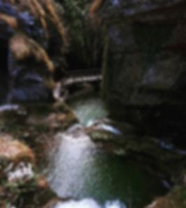 LandscapeofChange_runnerup_Eliana Longo