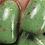 Thumbnail: Mistletoe and Holly