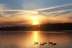 Adams Lake