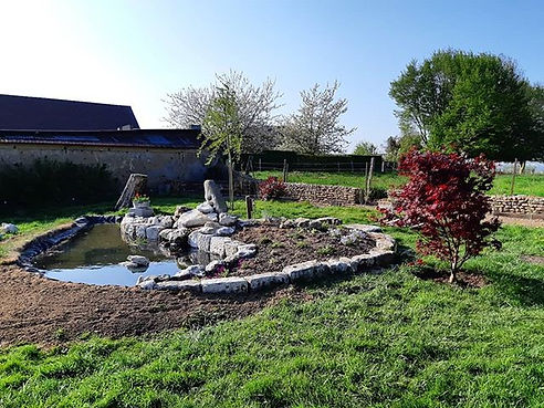 Last September I began this garden pond