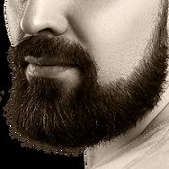 vignette-barbe.png