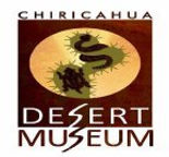 142-desert-museum-51.jpg