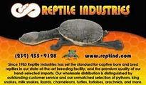 142-reptile-industry-19-300x174.jpg