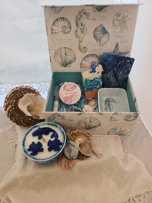 Sea Collection Box
