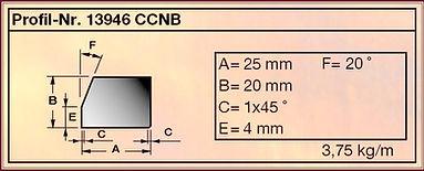 CCNB_Zincir_Elektrodları_2.jpg