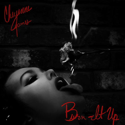 """BURN IT UP"" PHYSICAL CD"