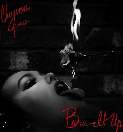 Burn It Up AlbumCover EDIT.jpg