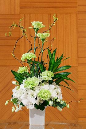 SH25 Fresh green look flower display
