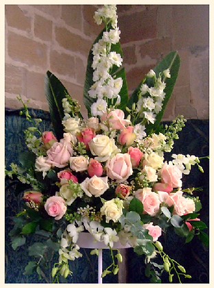 LR1 Large flower roses display