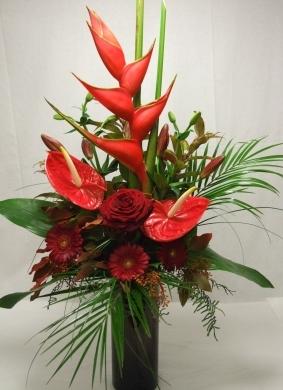 tfd7- Red Tropical flowers