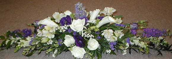Purple and white head flowers