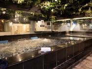 Male Pool Facilities
