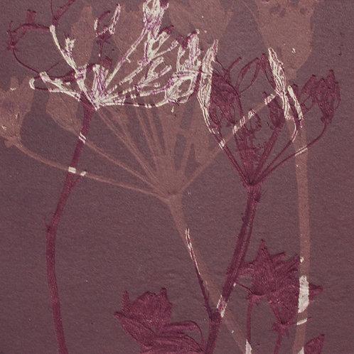 Wild Flowers III