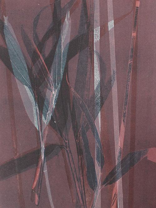 Sasaya Leaf II
