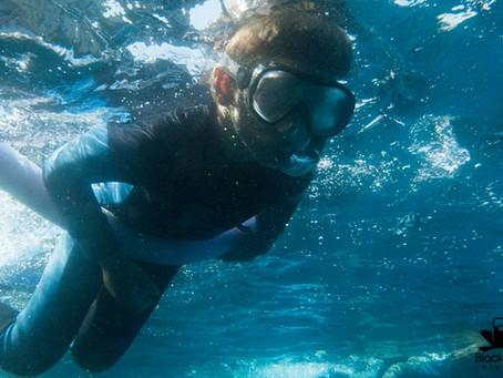 Det finns mycket att se under vattenytan