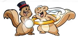 SQ_Wedding