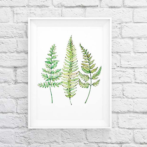 watercolor ferns hand painted watercolor painting nature botanical wall art print