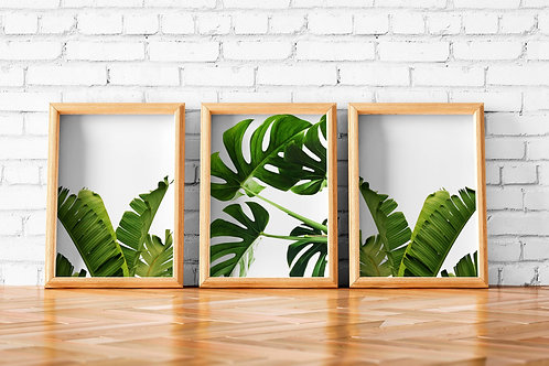 tropical leaves, set of three, printable art, monstera, banana leaves