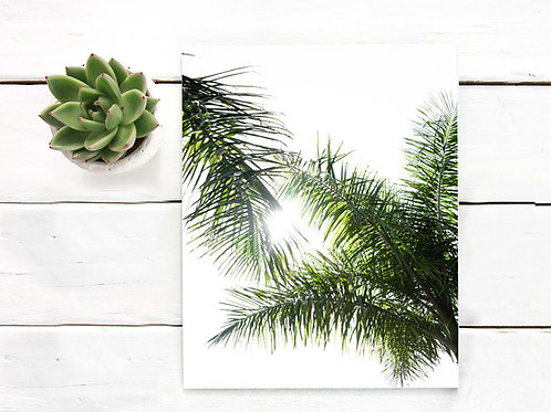 Palm leaves art print, artist poster print