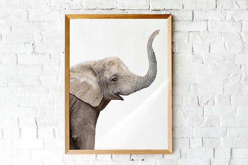 Baby elephant nursery art photographic printable