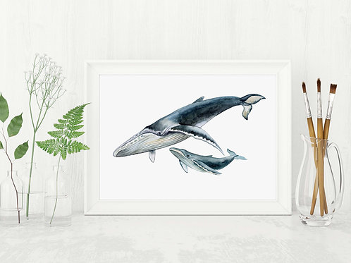 Humpback Whales Mother and Baby | Watercolor Printable art