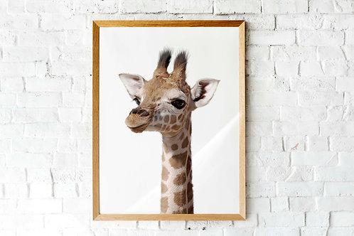 Baby giraffe photo printable poster