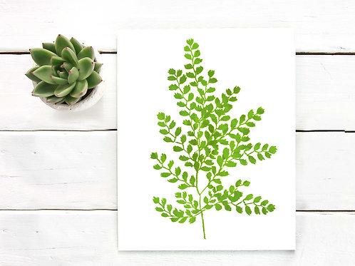 Watercolor Maidenhair fern | Printable art instant download watercolor painting