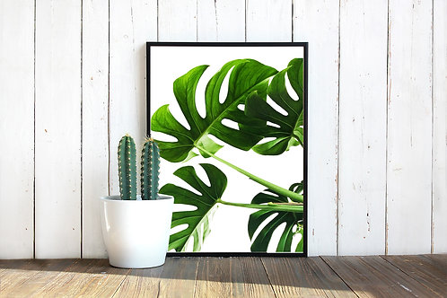 Monstera leaf print, green nature print, tropical leaf print