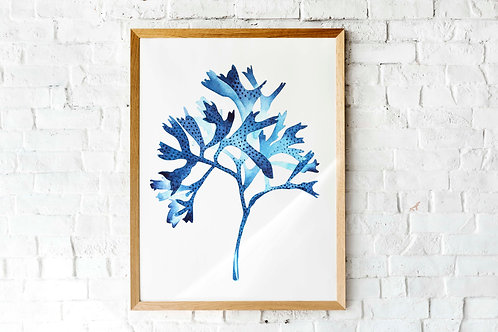 Printable coral seaweed blue ink watercolor wall art | hamptons coastal nautical style