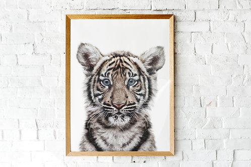 Baby tiger printable photographic nursery art