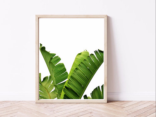Tropical leaves - set of three - photographic prints