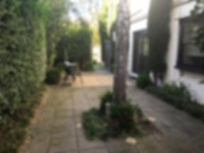 Garden Path - The EMDR Clinic | EMDR Melbourne