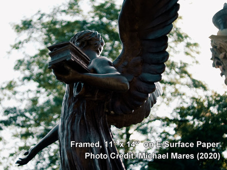 "AUCTION COMPLETE! ""Beneficence From a Different Angle"" (11""x14"", July 2020, by Michael Mares)"