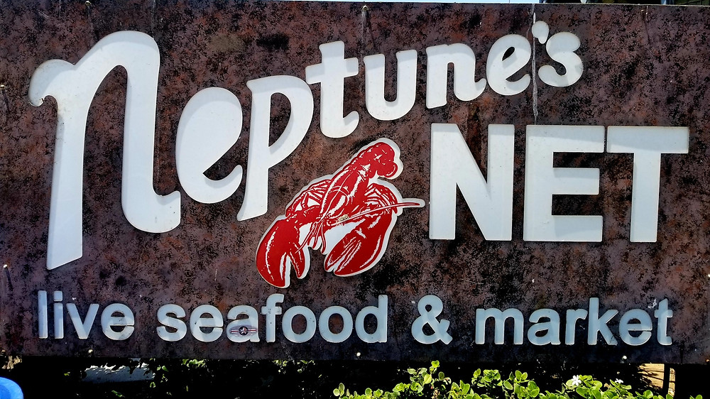 Neptune sign