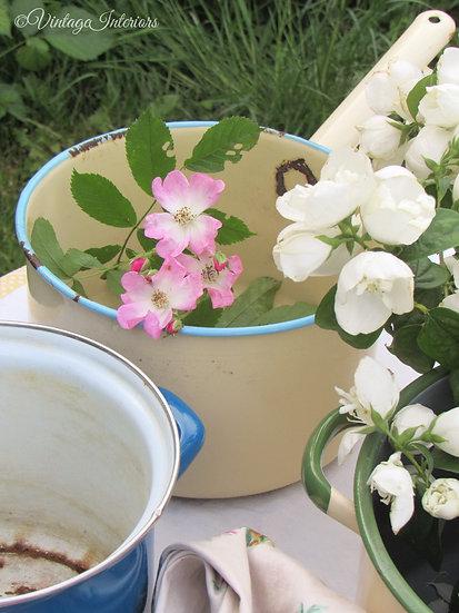 Vintage enamel pan planters blue trim