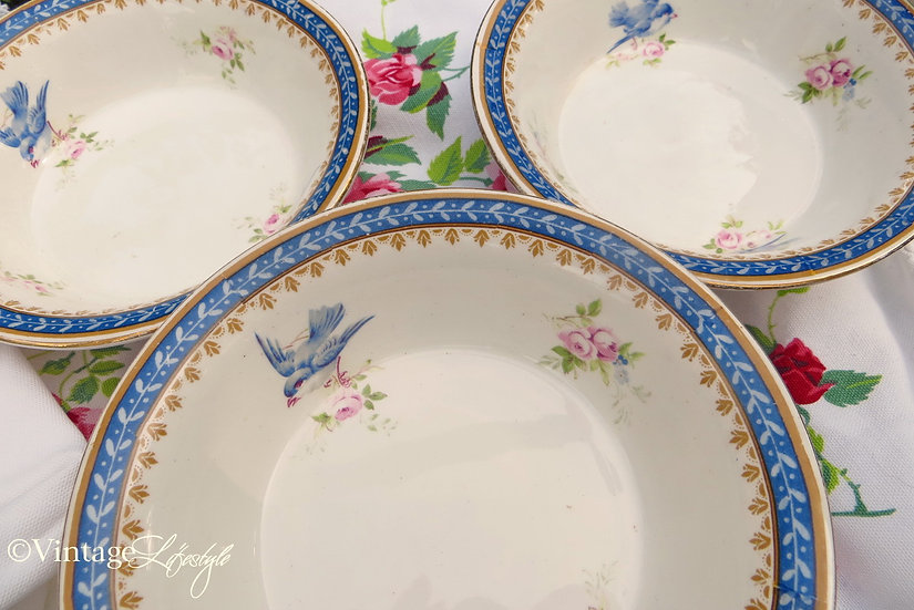 dishes Bowls Bluebird pink roses vintage shabby close up 2