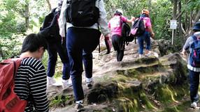 鷹取山ハイキング