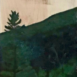 """Forest Sun"""