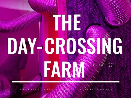 WATCH: The Day Crossing Farm