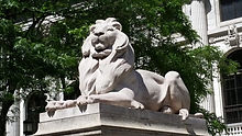 NYPL Lion.jpg