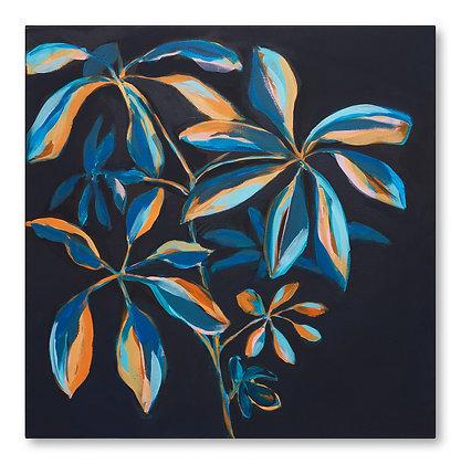 Blue and Orange Umbrella Plant