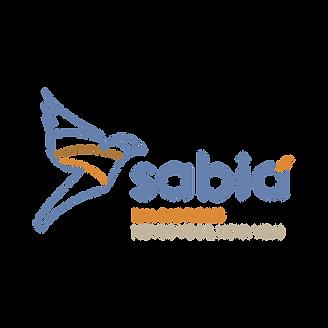 SABIÁ REDONDO.png
