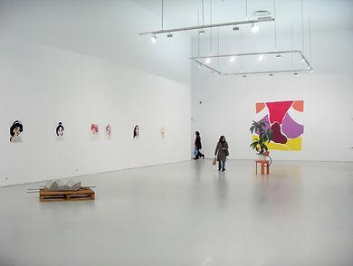 Sarah-Barthe/Travaux en cours/Musée d'art moderne de St Etienne/2008