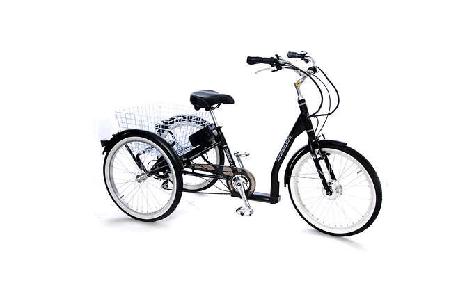 E-Mission Electric Adult Tricycle (Special Order)