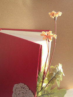 Notebook packaging design
